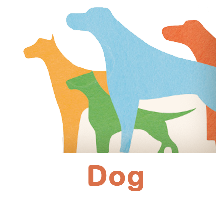 Almo Nature Dog Products